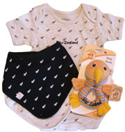 Grey Baby Gift Set, includes fern romper a black and grey bib with a Kiwi Rattle