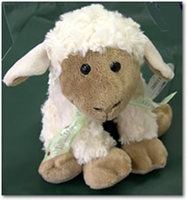 Herbert Junior the Sheep